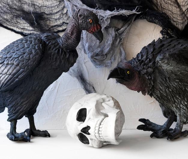 Avvoltoi vicino al teschio giocattolo Foto Gratuite