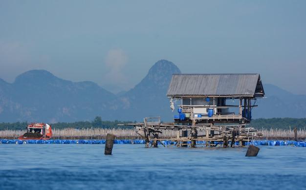 Azienda agricola del pescatore nel golfo della tailandia. Foto Premium