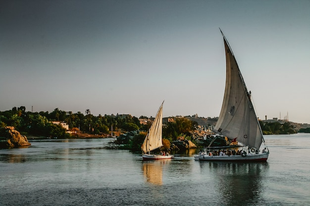 Barche a vela sul nilo Foto Premium