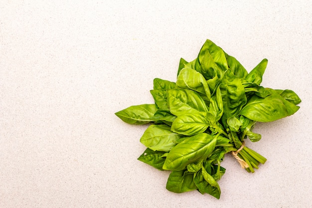Basilico fresco verde erba biologica Foto Premium