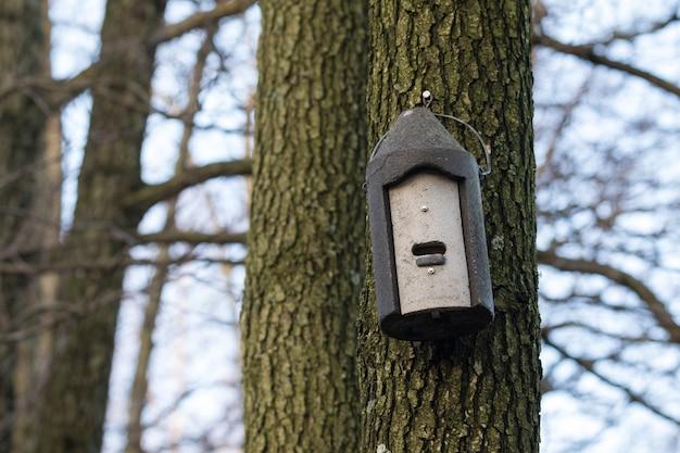 Batbox in cemento di legno appeso a un albero Foto Premium