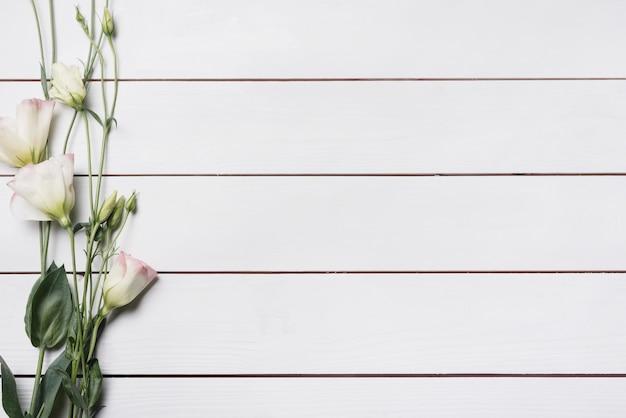 Bei ramoscelli del fiore di eustoma sulla plancia di legno bianca Foto Gratuite