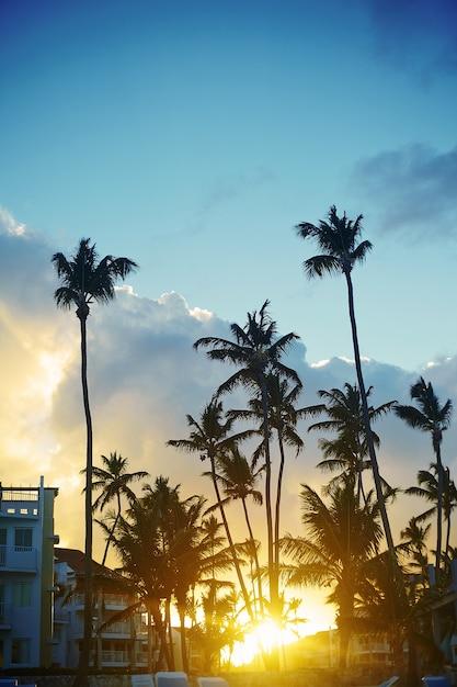 Bel tramonto in un resort sulla spiaggia ai tropici Foto Gratuite