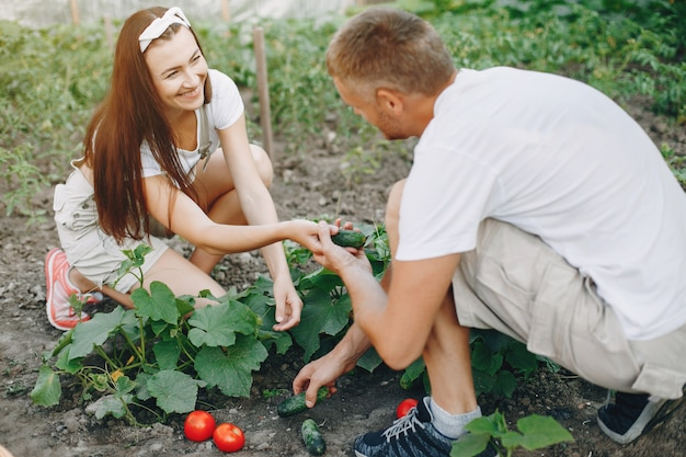 Bella coppia lavora in un giardino Foto Gratuite