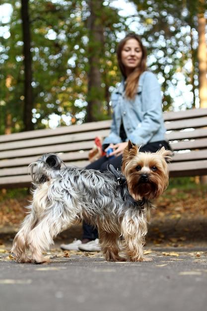 Bella donna con il suo simpatico cane Foto Gratuite