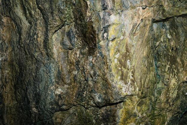 Bella grotta vista dall'interno di un sotterraneo buio. Foto Premium