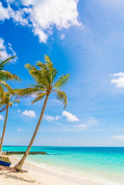 Bella Isola Tropicale Delle Maldive Spiaggia Di Sabbia Bianca E