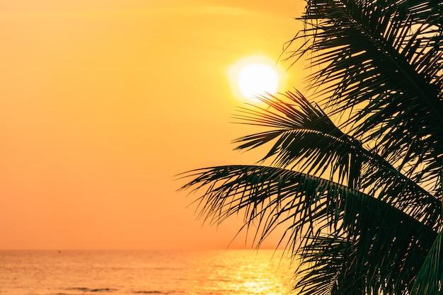 Bella natura all'aperto con foglia di cocco con alba o tramonto Foto Gratuite