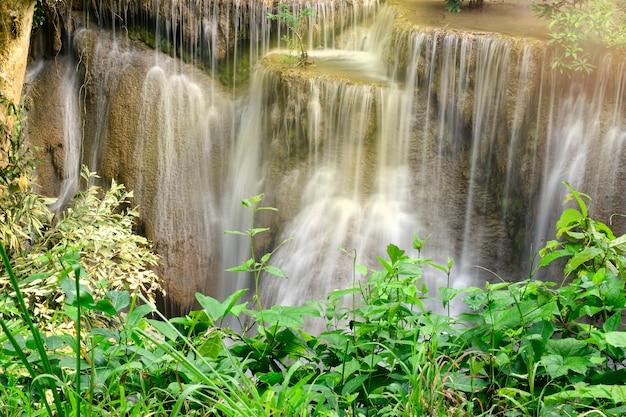 Bella panoramica della cascata e foglie verdi. tailandia Foto Premium
