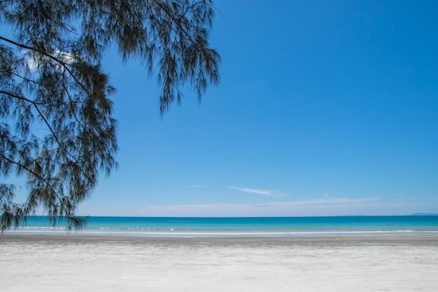 Bella Scena Mare Tropicale E Spiaggia Con Sfondo Azzurro Del Cielo