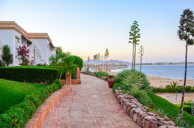 Bella serata all'hotel arabo egitto. sharm el-sheikh Foto Premium