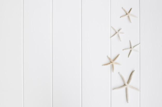 Bella Stella Marina Su Sfondo Bianco In Legno Bello Scaricare Foto