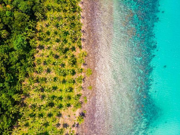 Bella vista aerea della spiaggia e del mare con palme da cocco Foto Gratuite