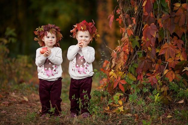 Belle bambine gemelle che tengono le mele nel giardino di autunno. bambine che giocano con le mele. bambino che mangia frutta al raccolto di autunno. nutrizione sana. attività autunnali per bambini. hallowee Foto Premium