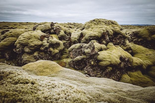 Belle colline verdi e campi dell'islanda Foto Gratuite