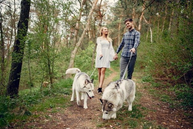 Belle coppie in una foresta di estate con cani Foto Gratuite