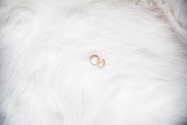 Belle fedi nuziali su sfondo bianco Foto Premium