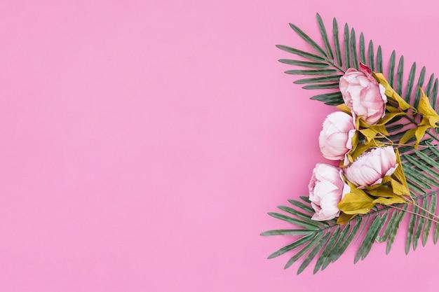 Belle rose con foglie di palma su sfondo rosa Foto Gratuite