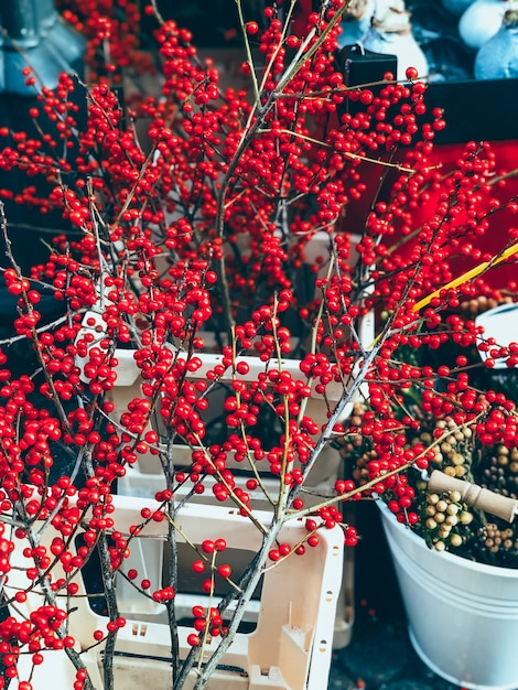 Bellissima decorazione natalizia Foto Premium
