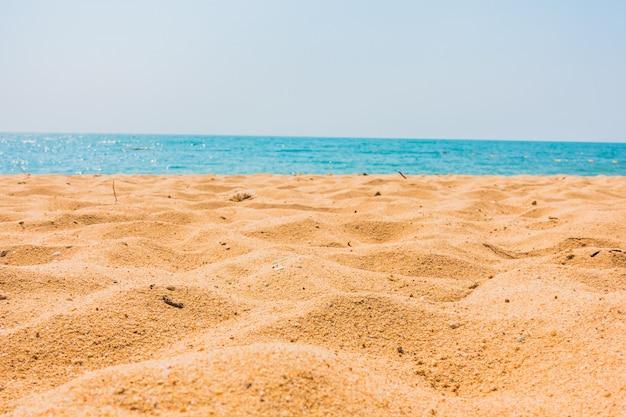 Bellissima spiaggia e mare con palme Foto Gratuite