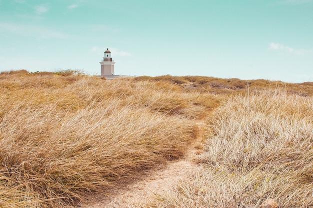 Bellissimo campo con vegetazione secca e una torre faro faro in lontananza sotto un cielo blu Foto Gratuite