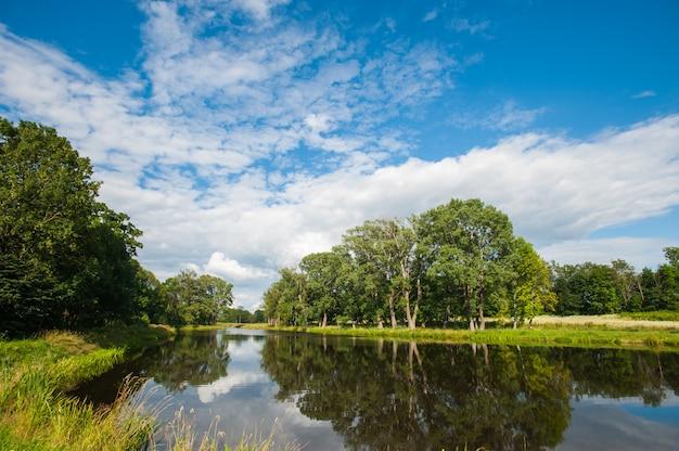Bellissimo lago tranquillo con alberi all'orizzonte e bianche nuvole gonfie nel cielo. tranquilla giornata estiva al cottage. grandi alberi verdi su un lago Foto Premium
