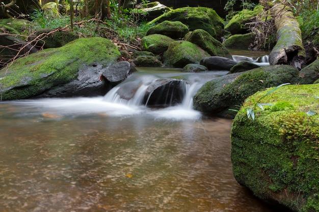 Bellissimo paesaggio di cascata. Foto Premium