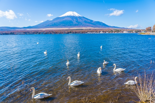Bellissimo paesaggio di montagna fuji intorno al lago yamanakako Foto Gratuite