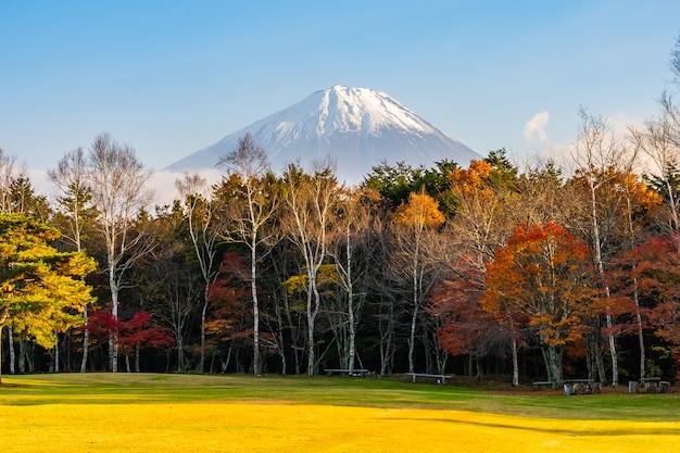 Bellissimo paesaggio di montagna fuji Foto Gratuite