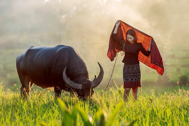 Bello agricoltore tailandese che esamina il suo bufalo Foto Premium