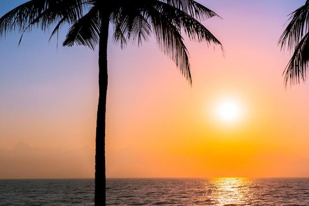 Bello albero del cocco della siluetta sulla spiaggia vicina dell'oceano del mare del cielo al tramonto o al tempo di alba Foto Gratuite