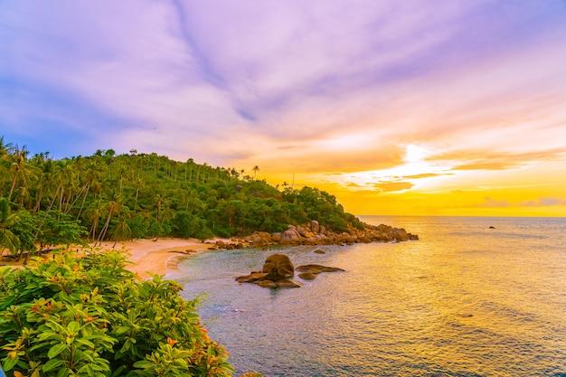 Bello mare tropicale all'aperto della spiaggia intorno all'isola di samui con l'albero del cocco Foto Gratuite