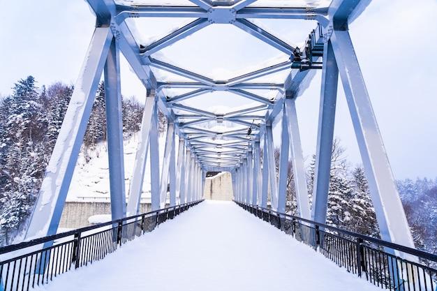 Bello paesaggio all'aperto della natura con la cascata di shirahige e ponte nella stagione invernale della neve Foto Gratuite