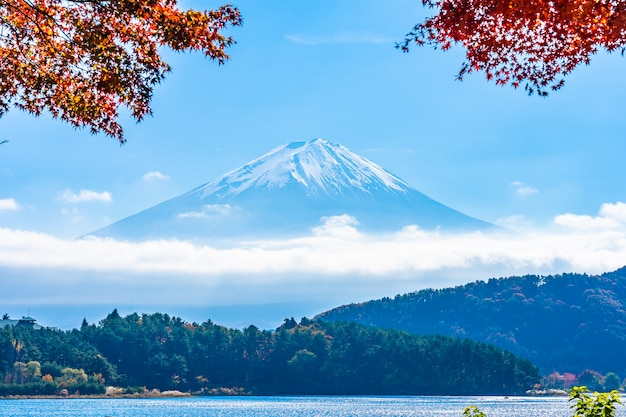 Bello paesaggio della montagna fuji con l'albero della foglia di acero intorno al lago Foto Gratuite