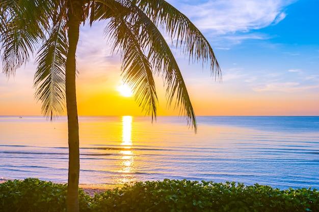 Bello paesaggio della natura all'aperto del mare e della spiaggia con l'albero del cocco Foto Gratuite