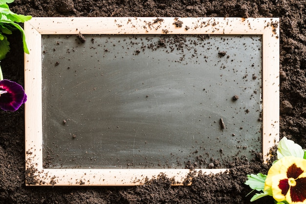 Blank ardesia di legno con fiori viola del pensiero sul terreno Foto Gratuite