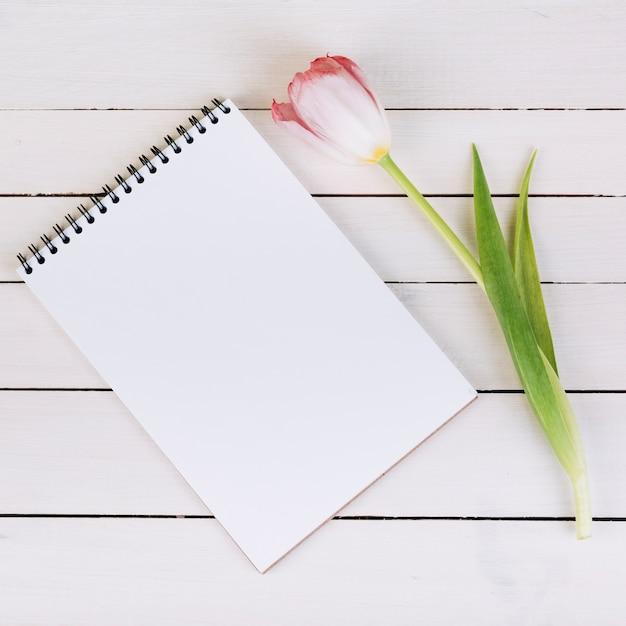 Blocchetto per appunti a spirale bianco in bianco e tulipano rosa fresco sullo scrittorio di legno Foto Gratuite
