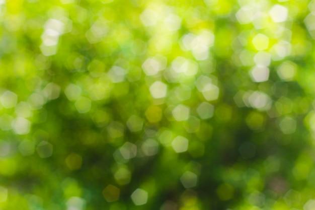 Bokeh astratto verde, fondo verde Foto Premium