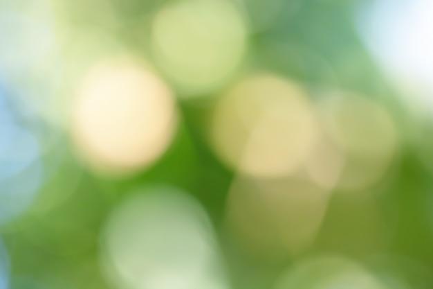 Bokeh dell'albero per fondo astratto Foto Premium