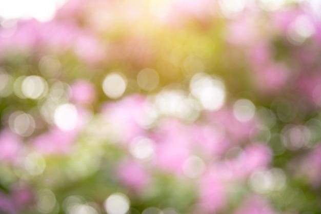Bokeh natura verde e fiori Foto Premium