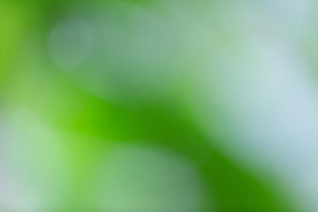 Bokeh verde sulla sfocatura della natura. elemento di design. Foto Gratuite