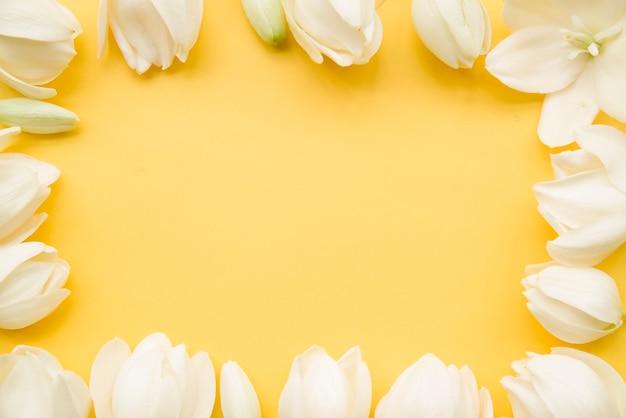 Bordo del fiore bianco su sfondo giallo con spazio di copia per il testo Foto Gratuite