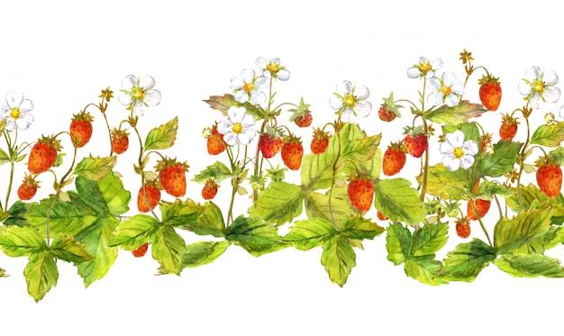Bordo senza cuciture con frutti di bosco selvatici Foto Premium
