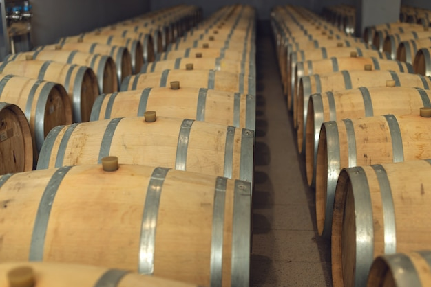 Botti di rovere di vino in cui il vino rosso è invecchiato nella cantina della cantina. Foto Premium