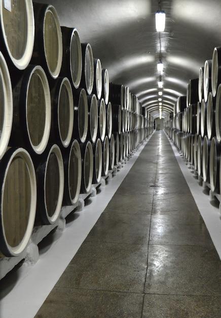 Botti di rovere si trovano in file nella cantina, conservazione e invecchiamento del vino Foto Premium