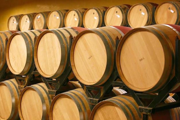 Botti di vino in cantina. spagna, europa Foto Premium