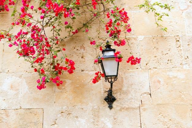 Bouganville nel muro di pietra e lampione nel mediterraneo Foto Premium
