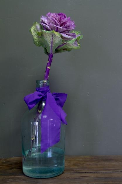 Brassica oleracea capitata o cavolo decorativo in un vaso di vetro con un nastro viola su uno sfondo grigio, cartolina d'auguri o concetto Foto Premium