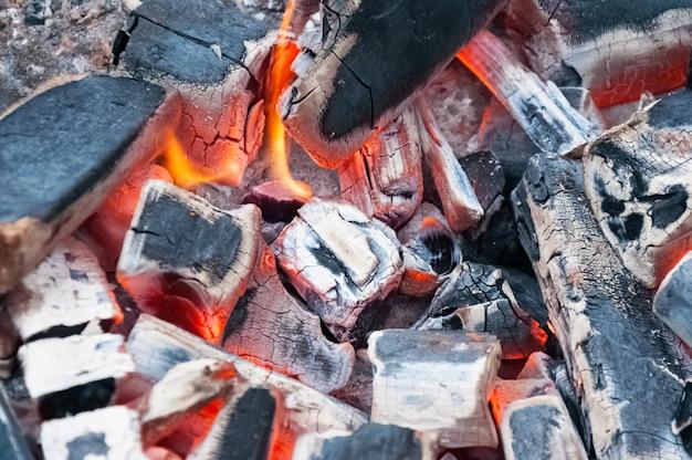Brucia carbone di legna in bbq grill pit Foto Premium