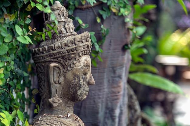Buddismo per statue o modelli del ritratto di buddha Foto Premium